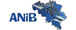 Australian Network in Belgium